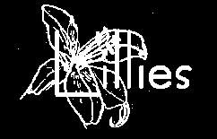 Lillies Goods Logo White